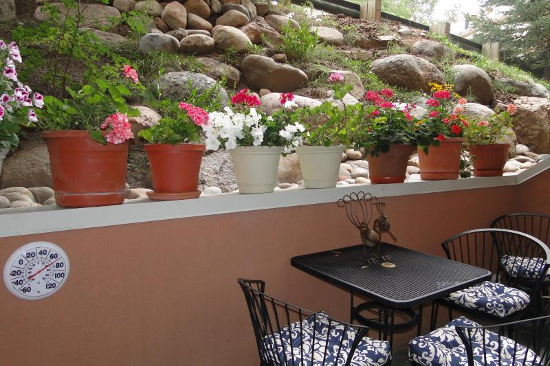 Potted plants on patio, delightful for appertifs - SUMMER RENTALS ONLY $21OO/WEEK - Beaver Creek - rentals