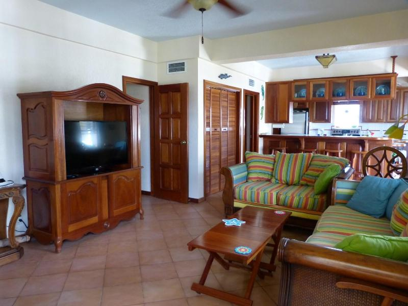 Step into your tropical home away from home - Amazing Penthouse Condo w/ Awesome Caribbean View! - San Pedro - rentals