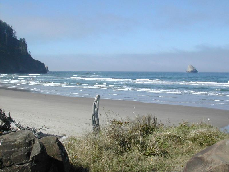 Cape Meares Beach - Immaculate Oregon Oceanview Rental - Cape Meares - rentals