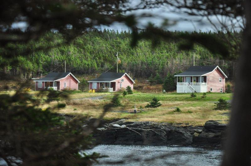 Ocean front cottages with all the comforts of home - Ocean Delight Cottages - Whiteway - rentals