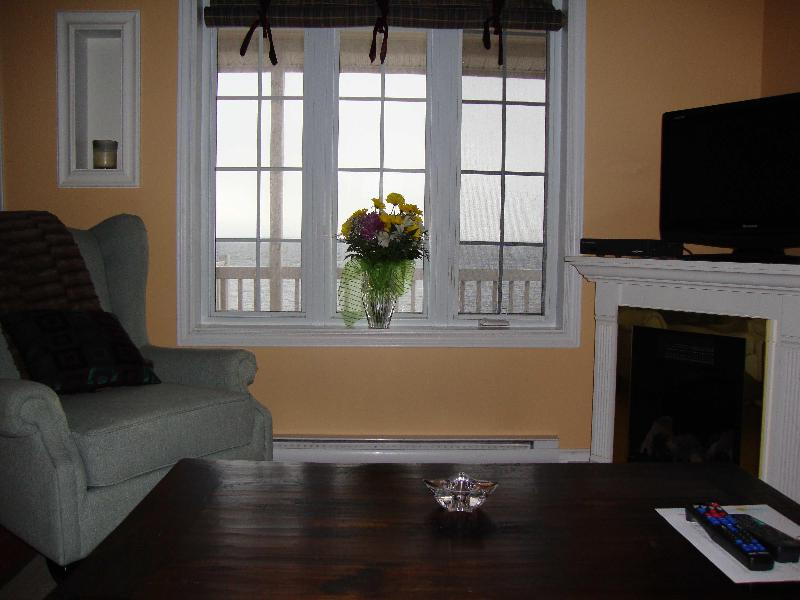 Beautifully furnished, electric fireplace - The Gannet Cottage - Heart's Delight - rentals