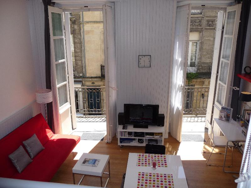 With its south exposure, and original floor-to-ceiling windows, the apartment's always bright  - Luxurious Vacation Rental in the Heart of Bordeaux - Bordeaux - rentals