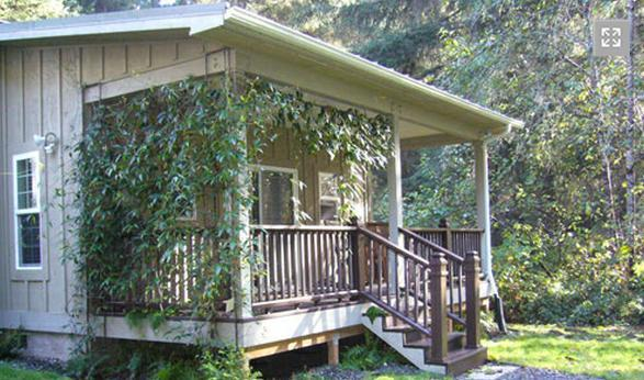 Cottage #1   - The Golden Eagle Cottages: 1 - Trinidad - rentals
