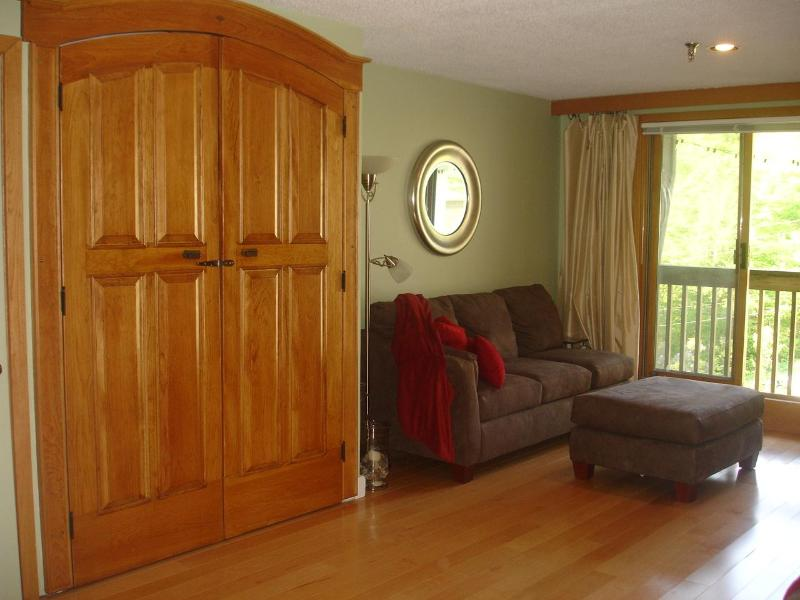 Mountain-Top Studio Condo - Image 1 - Bolton Valley - rentals