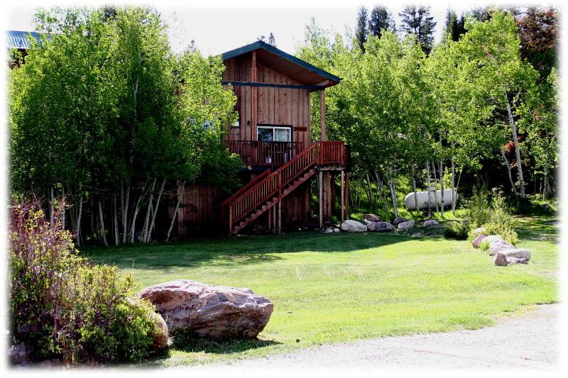 Front View of Cabin and Front Yard - 10 person Rustic Cabin at the Base of The Snowies! - Centennial - rentals