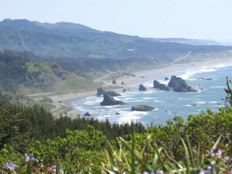 condo in wild and scenic Oregon,  ocean town - Image 1 - Gold Beach - rentals