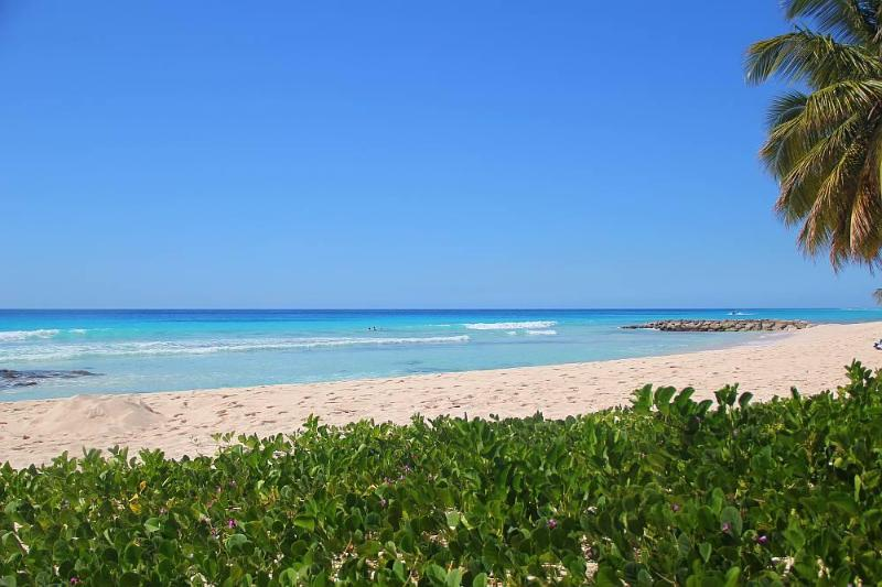 Rainbow Beach - just seconds away! - 3 and 2 bedroom apt. with beach view - Christ Church - rentals