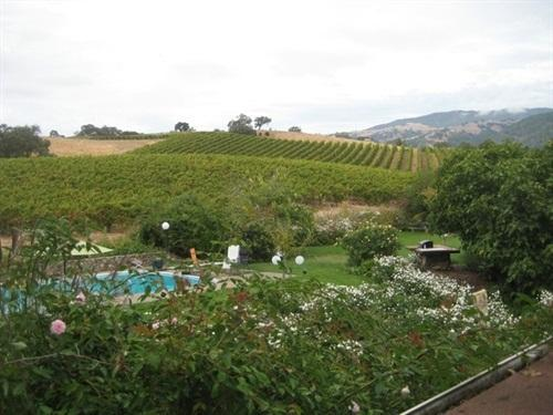 Rolling Hills and Vineyards - Wine Country Retreat + Pool in Alexander Valley - Geyserville - rentals
