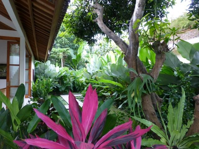 Villa Sutra, perfect for a relaxing holiday. - Image 1 - Pemuteran - rentals