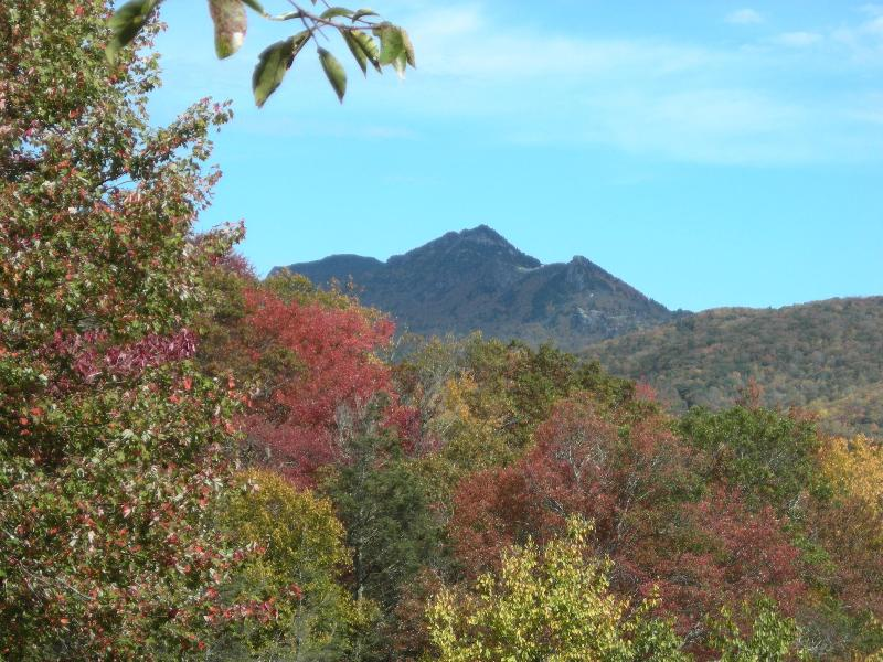 Grandfather Mtn. view from deck - Big Grandfather Mtn View close to Blue Ridge Pkwy - Linville - rentals
