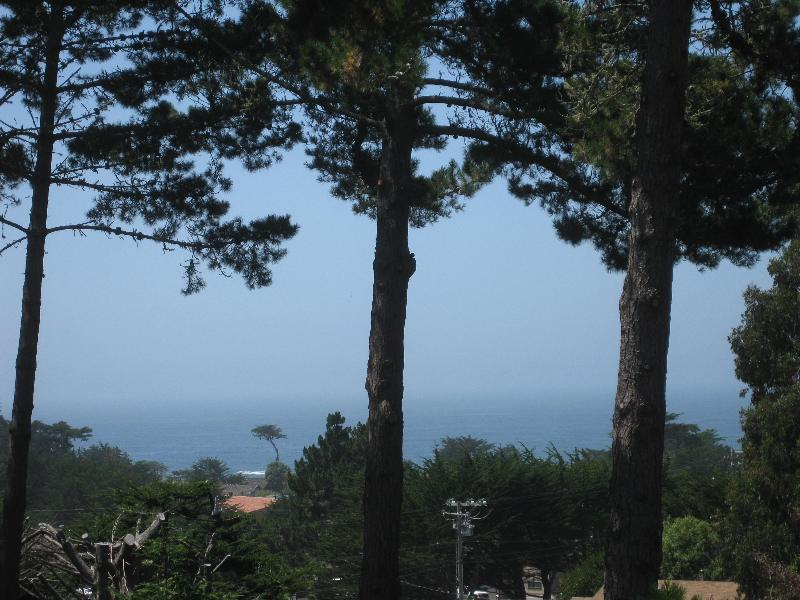 View from deck - Moss Beach House near Half Moon Bay - Half Moon Bay - rentals