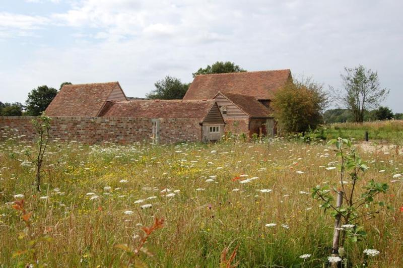 The Cowshed and the Piggery - Converted Barns on a Sussex Organic Farm - Heathfield - rentals