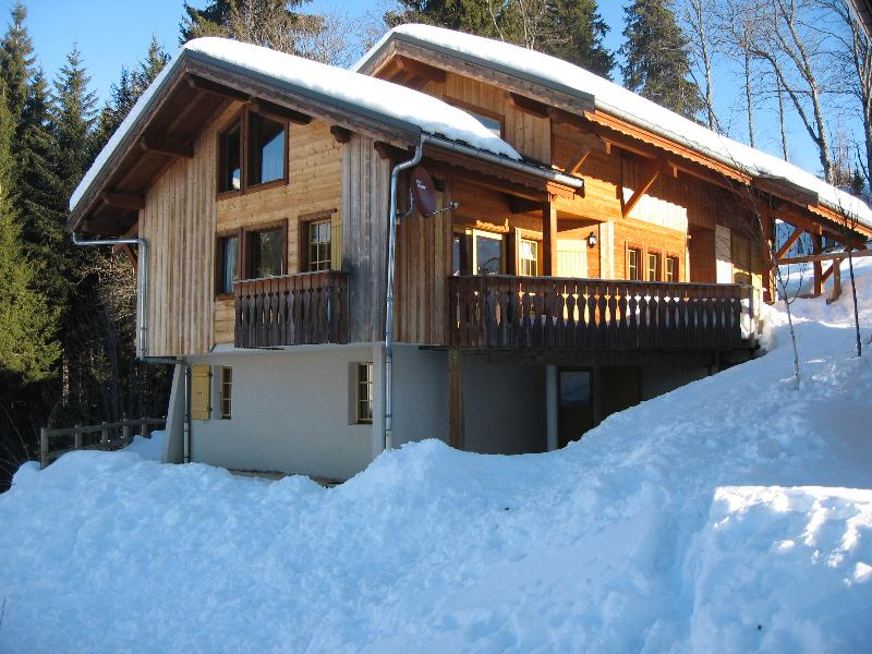 Chalet Ruisseau's garden offers multiple sledding options for children. Trust me! - Chalet Ruisseau, Les Gets, France - Les Gets - rentals
