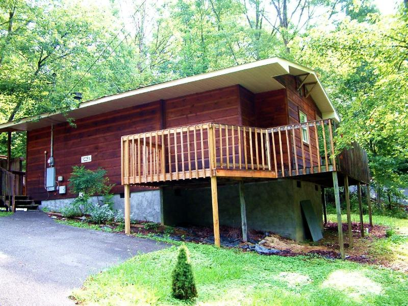 Blueberry - 1 Br cabin 1 mile from Pigeon Forge - Image 1 - Pigeon Forge - rentals