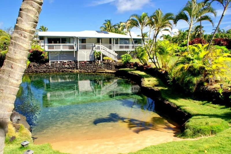 View of the tidal pond and back of house - Clearpond Paradise - oceanfront with warm pond - Pahoa - rentals