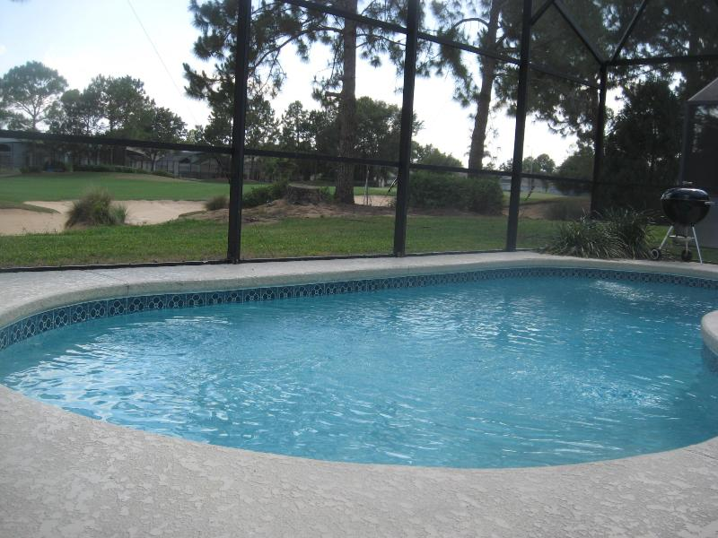 Privately Screened South Facing Swimming Pool - Available New Years & January  South Pool - Haines City - rentals