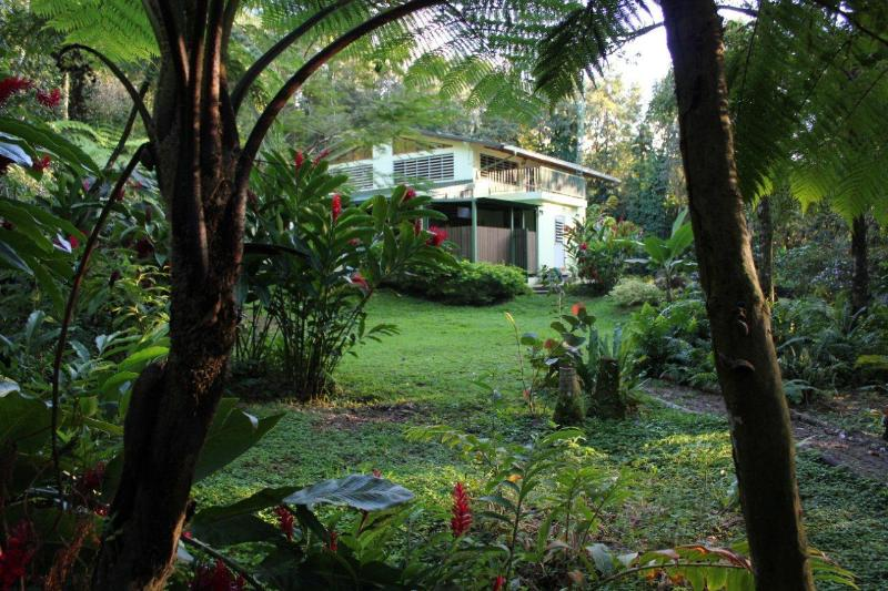 Rainforesthome rearview - Rainforest Home at El Yunque Puerto Rico - private - Rio Grande - rentals