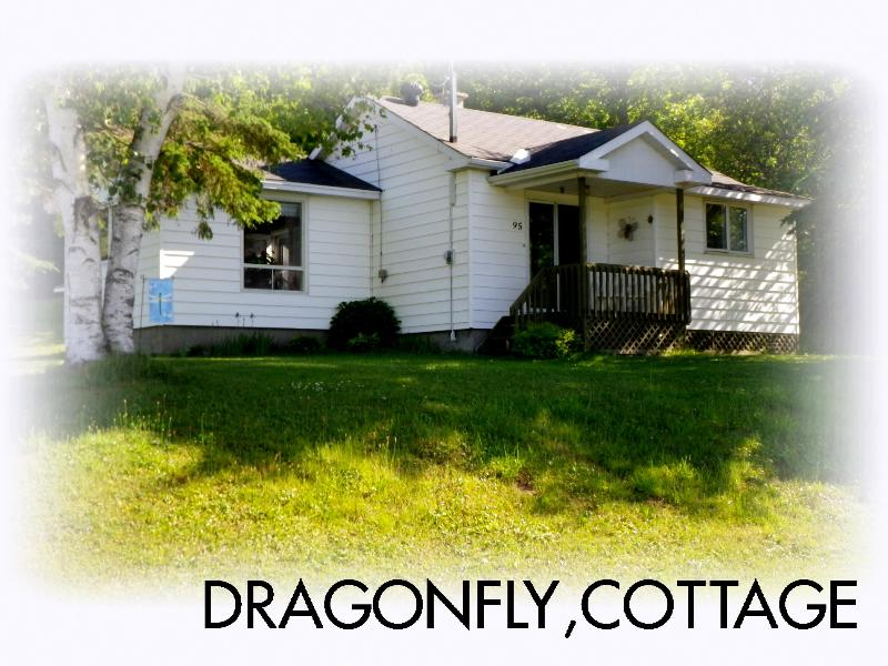 The Dragonfly Cottage - 2 bedroom house-Gatineau Park-30 min. from Ottawa - Wakefield - rentals