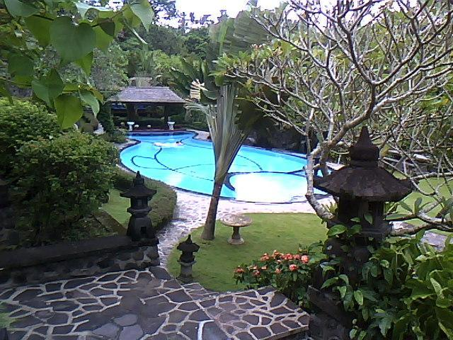 share swimming pool in lush gardens - 4-storey top quality property in SouthEast Bali - Gianyar - rentals