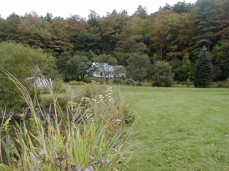 Our front yard - Mountain Valley Retreat Bed and Breakfast - Killington - rentals