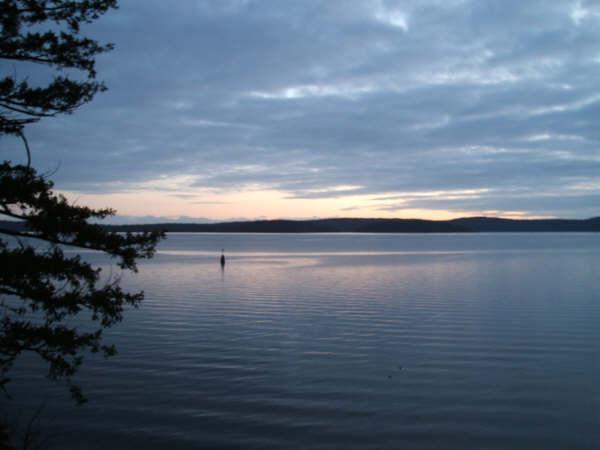 Oceanfront Condo in Yellow Point~Inn of the Sea - Image 1 - Ladysmith - rentals