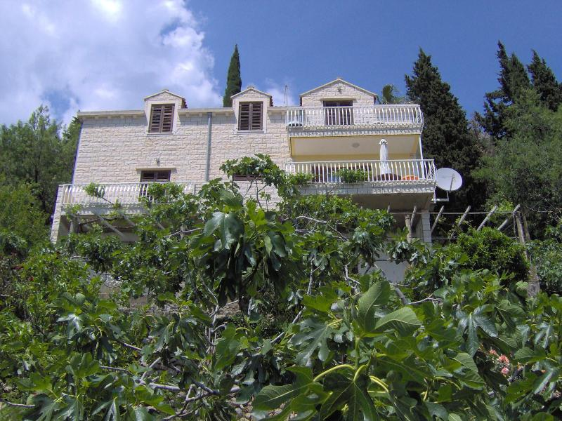 Front of the house in the orchard - 3 bdr.apartment nice view to old city Dubrovnik - Dubrovnik - rentals
