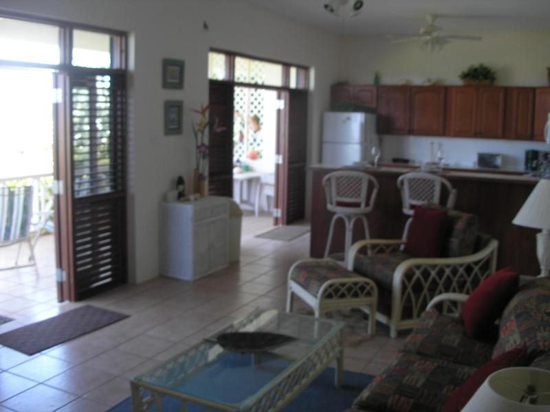 Seabreeze - One bedroom Condo in Frigate Bay - Image 1 - Frigate Bay - rentals