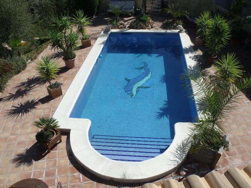 The Roman Stepped 8 x 4 M Pool  - Stunning Villa in Rural Spain with Private Pool - Comares - rentals