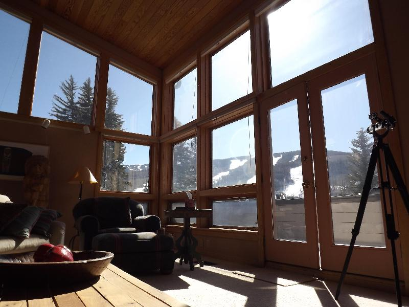 Living Room - Spacious Sunny Townhome with Splendid Views - Vail - rentals