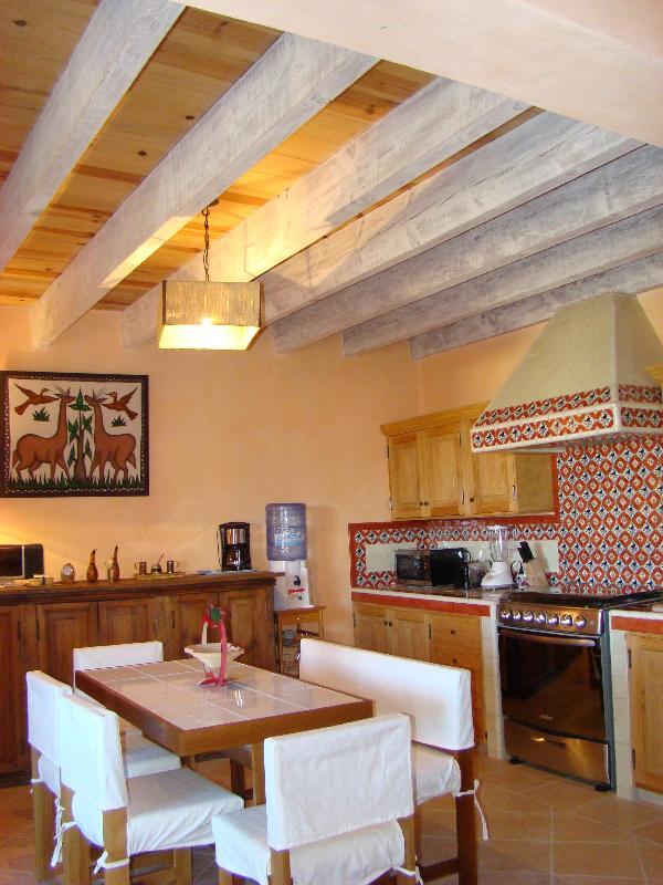 Comfort in the best location in town - Image 1 - San Miguel de Allende - rentals