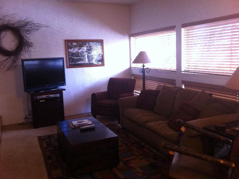 Living Room - Luxury 2BR/2BA Condo, Sleeps 6, Hot Tub and Pool!! - Vail - rentals