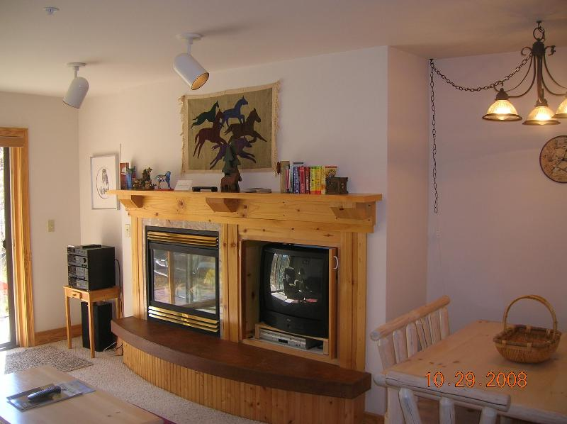 Living Room Fireplace - Ski Jackson Hole & Grand Targhee-1 Bedroom/1 Bath - Driggs - rentals