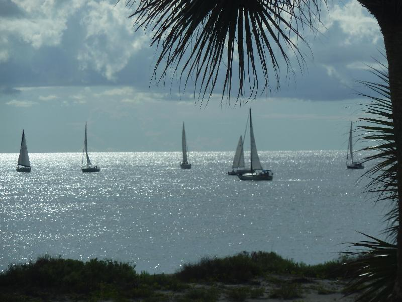 One of many beautiful views from the lanai - Venice Island 2 Bedroom Condo on the Gulf & Beach - Venice - rentals