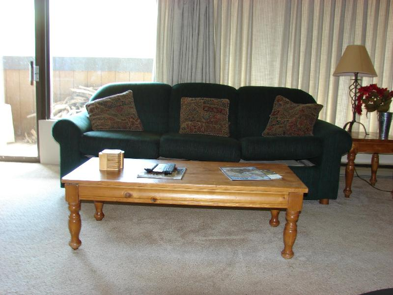 Living room with 2 pullout sofas - 2 BR Snowcrest, walk to lifts.$125/nt 5th nt free. - Crested Butte - rentals