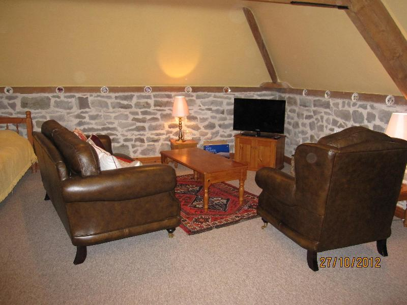 Robin and Swallows Nest - Image 1 - Craven Arms - rentals