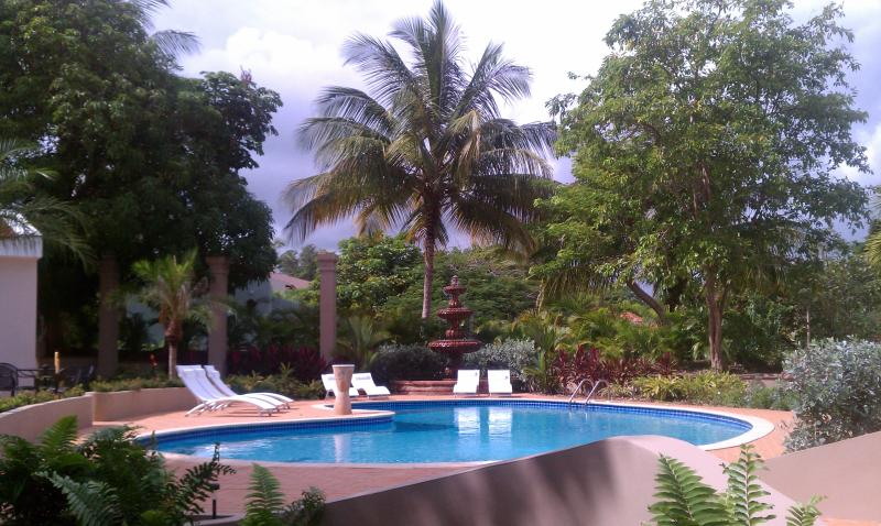 Tropical Oasis - Large Solar Powered Resort Home with exceptional yard and pool, completely renovated! - Humacao - rentals