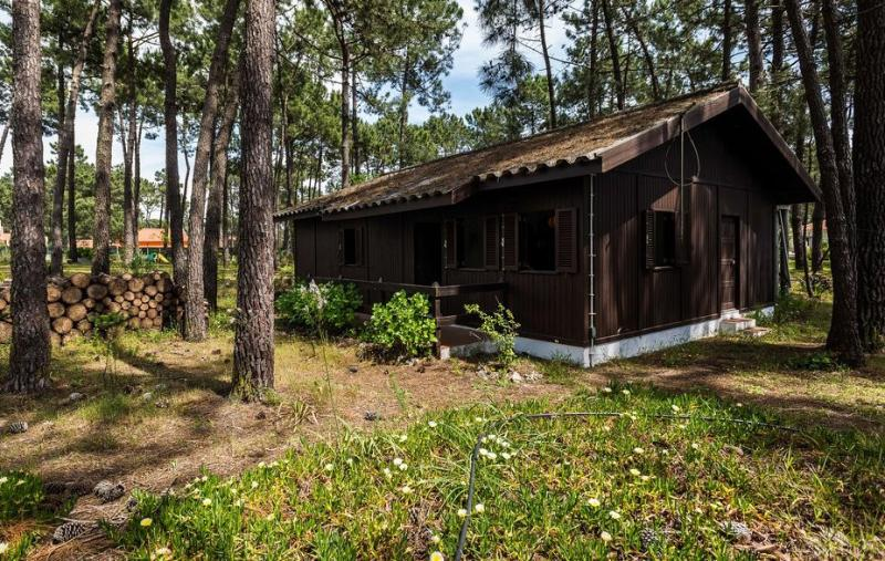 In the Woods near Beaches - Image 1 - Aldeia do Meco - rentals