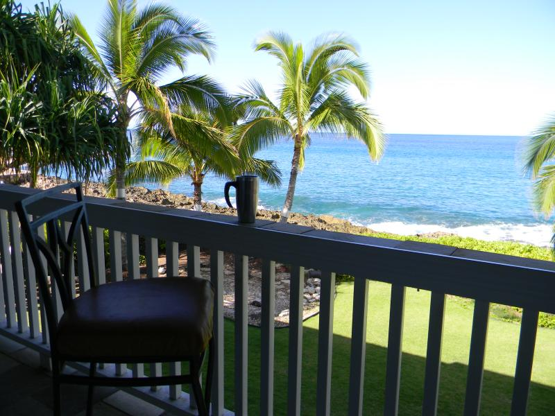 view for the back patio - Laulea Manor - Serene Ocean front property - Waianae - rentals