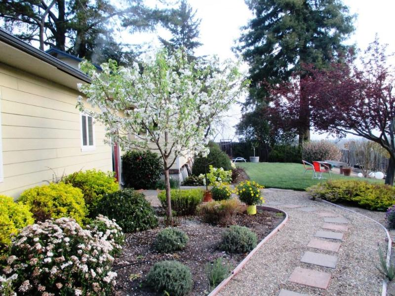 Exterior- Walkway to Main House Entrance - Sunrise Ridge Studio, Mountain View, Wine Country - Santa Rosa - rentals
