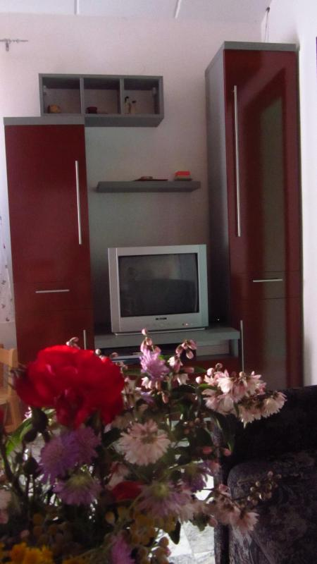 Living room - Comfy Holiday Apartment near Pula, Istria - Pula - rentals