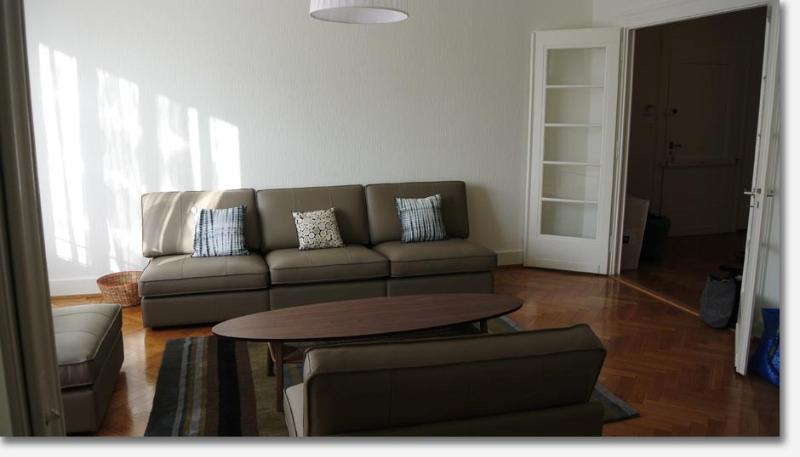 Furnished 5 room flat in Geneva, close to UN - Image 1 - Geneva - rentals