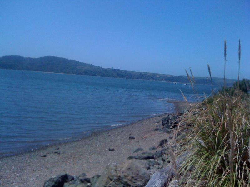 the beach - Tomales Bay Retreat - Saint Helena - rentals