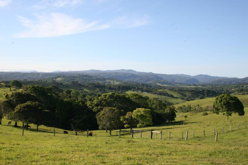 ooh, what a view!! - Nightcap Cottage, Byron Hinterland - what a view! - World - rentals