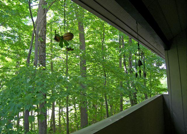 Summer View from Deck - Clearbrook Resort 6-2 - Professionally Managed by Loon Reservation Service - Lincoln - rentals