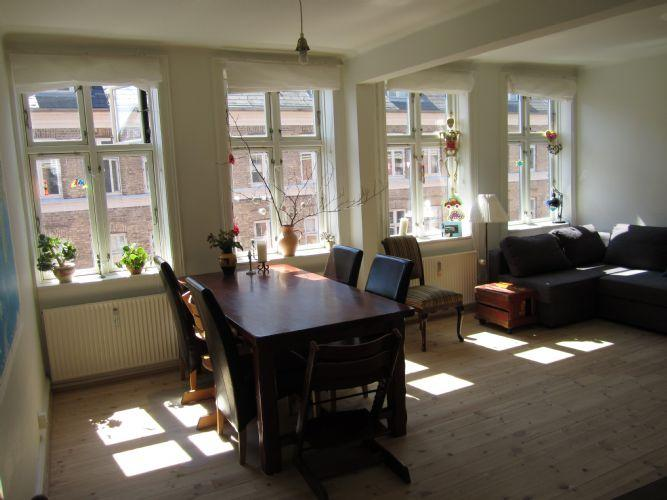 Ryesgade Apartment - Cozy Copenhagen apartment at the inner Oesterbro - Copenhagen - rentals