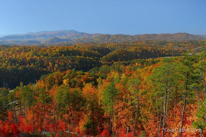 Peaceful View Cabin - Image 1 - Sevierville - rentals