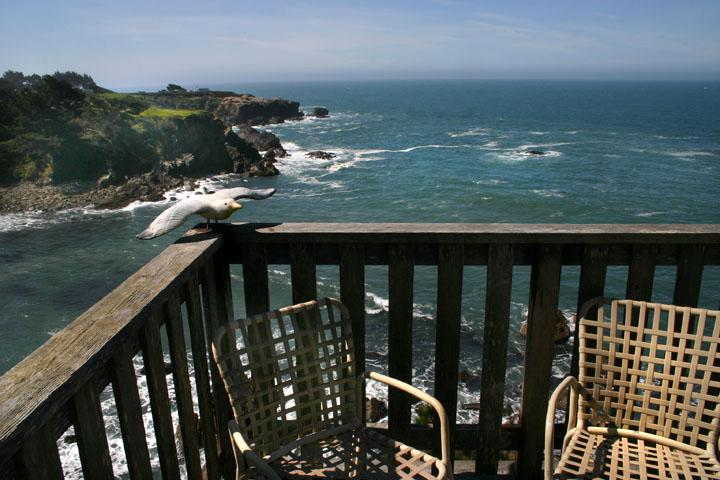 Pirates Cove spectacular ocean views - Pirates Cove  - JennerVacationRentals.com - Jenner - rentals