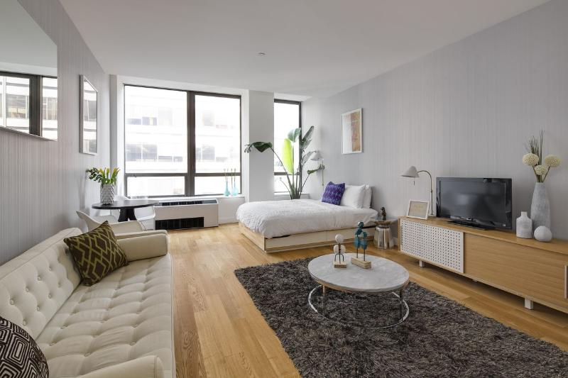 Living Room - Financial District Studio in Luxury Building - Manhattan - rentals