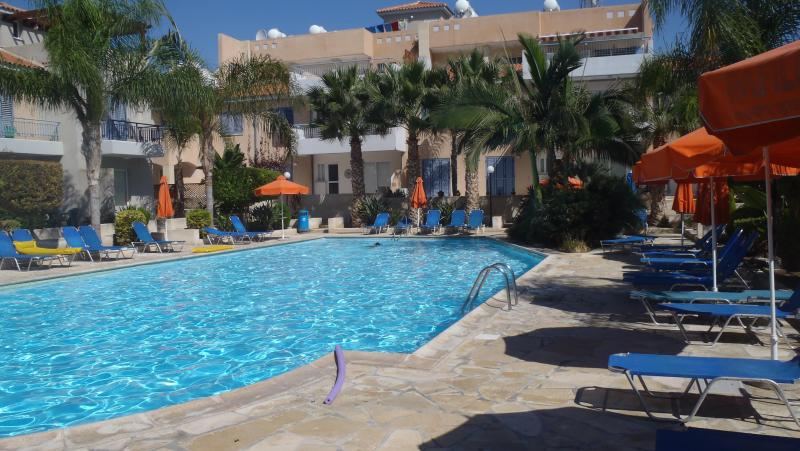 Pool - Icarus House 3 bedrooms with roof terrace - Paphos - rentals