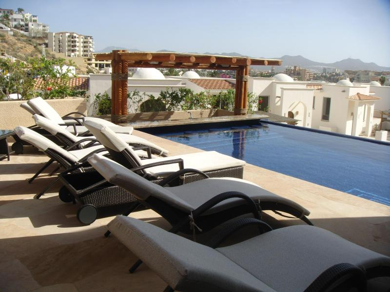 Heated 50ft Lap pool, swim up bar - Stunning Near New Home in Pedregal Secured Estate - Cabo San Lucas - rentals